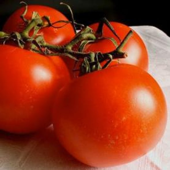 Dollars and Scents: The Chemistry of a Delicious Tomato