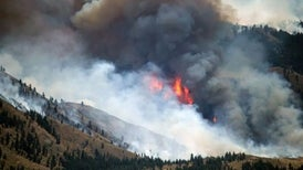 Unprecedented Spate of Wildfires Incinerates Homes in Pacific Northwest