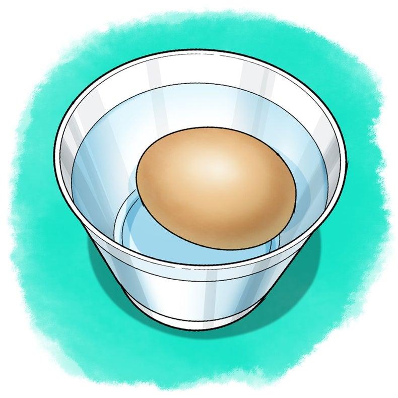 The Big Eggshell Breakdown