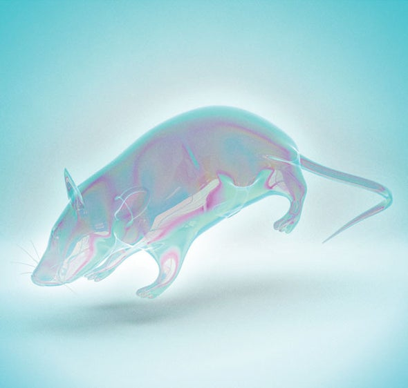 Turning Lab Animals Transparent