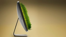 Growing Virtual Plants Could Help Farmers Boost Their Crops