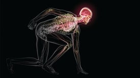 Why Your Brain Needs Exercise