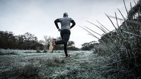 Simple Genetic Mutation Helped Humans Become Endurance Runners