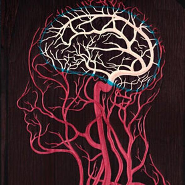 Web Exclusive: Breaking the Brain Barrier