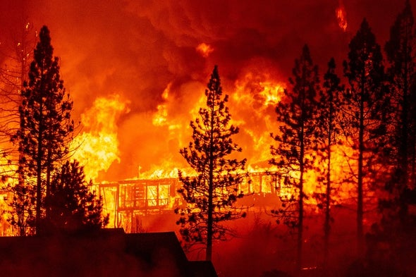 Severe Wildfires Raise the Chance for Future Monstrous Blazes