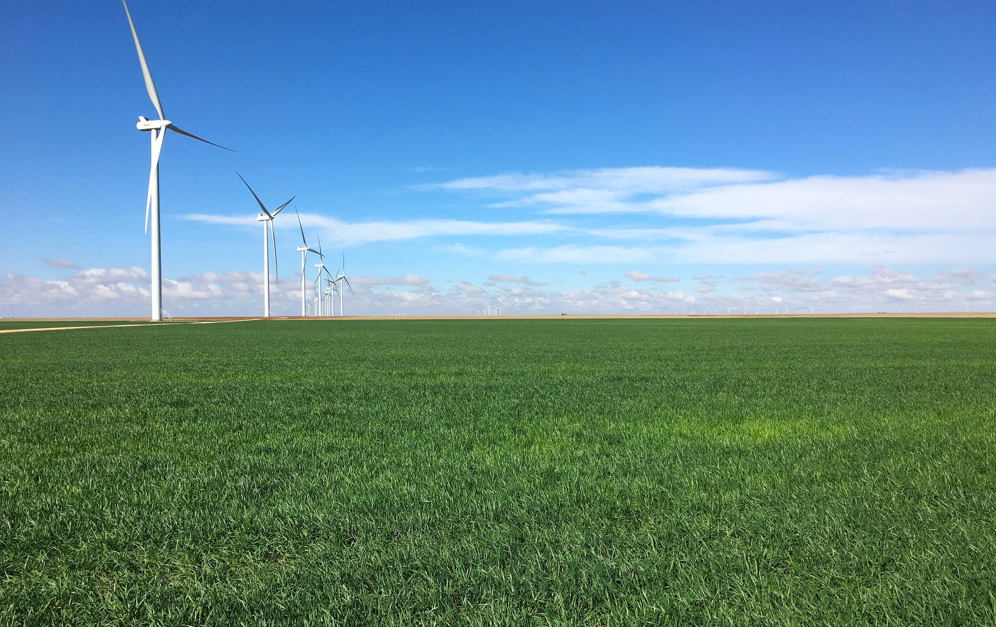 The Rise of Wind Power in Texas Scientific American