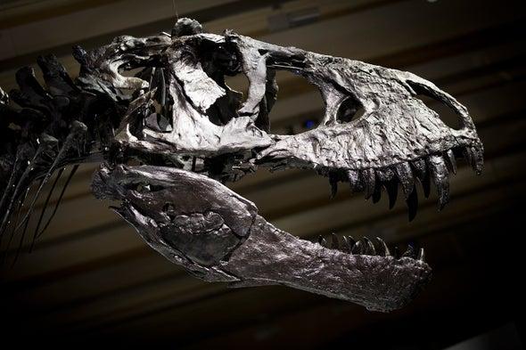 <i>T. rex</i> May Have Had Lips