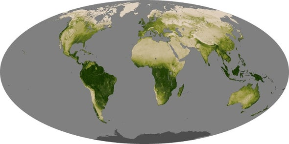 Earth Stopped Getting Greener 20 Years Ago