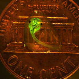 glowing-tadpole-on-penny