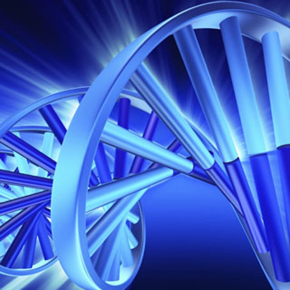 Longest Piece of Synthetic DNA Yet