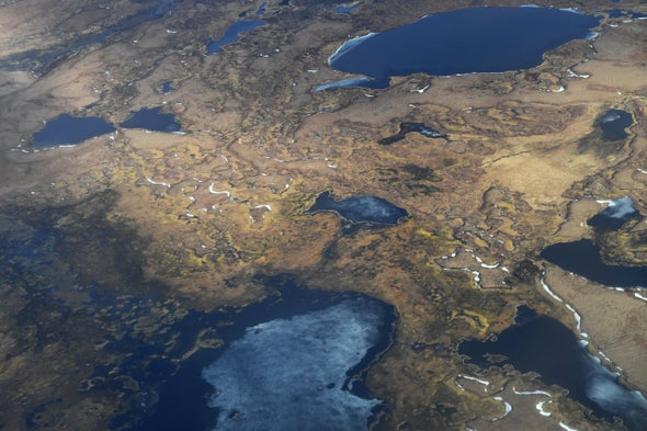 If Past Is a Guide, Arctic Could Be Verging on Permafrost Collapse