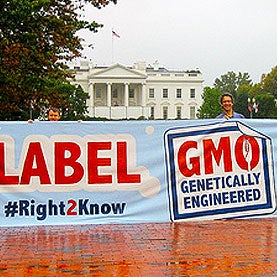 Why We Should Accept GMO Labels