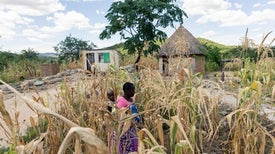 To Adapt to Climate Change, Vulnerable Areas Need Better Forecasts