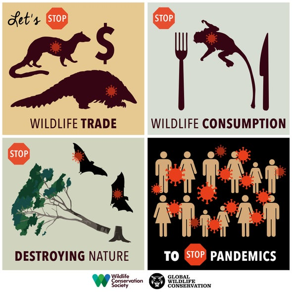 COVID-19: The Wildlife Trade and Human Disease