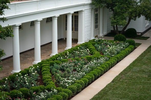 Biodiversity Conservation Should Start in Biden's Backyard