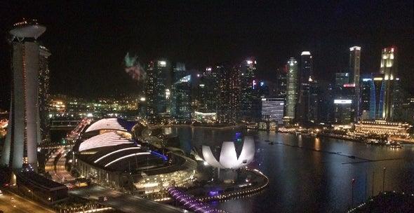 Wealthy Singapore Resists Tough Domestic Climate Action