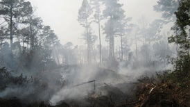 Vast Peat Fires Threaten Health and Boost Global Warming