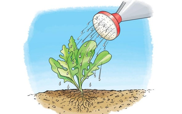 Water-Wise: Keep Soil Wet without Waste