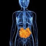 The Tantalizing Links between Gut Microbes and the Brain