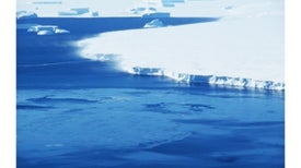 Antarctica Meltdown Could Double Sea Level Rise
