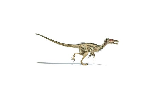 Dinosaurs: From Humble Beginnings to Global Dominance