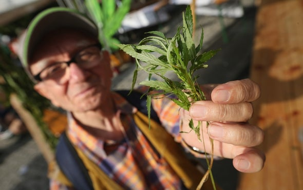 Seniors with Medical Marijuana Access Use Fewer Prescription Drugs