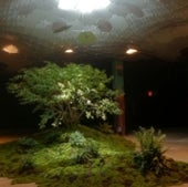 LOWLINE EXHIBIT: