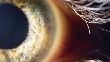 New Technologies Track Our Eyes--And Read Our Minds