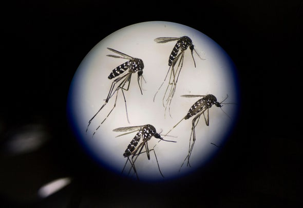 Gene Drives Thwarted by Emergence of Resistant Organisms