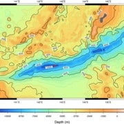 Unusual Bacteria Discovered in Deepest Ocean Trench