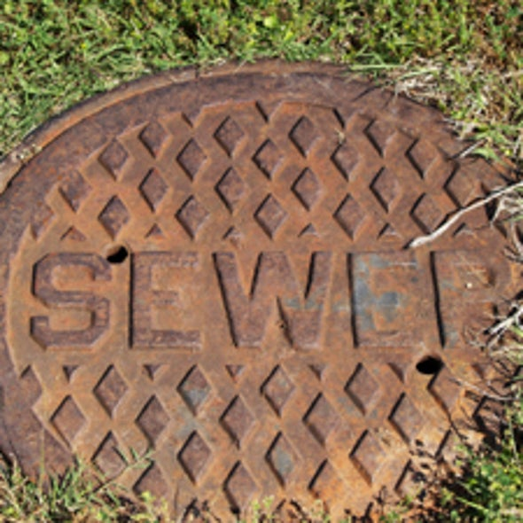 How Does Sewage Treatment Work?