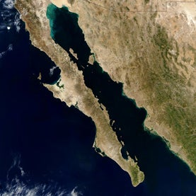 gulf-of-california