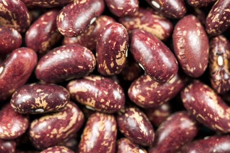 30 Heat-Tolerant Beans Identified, Poised to Endure Warming World