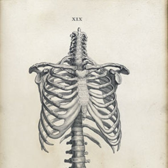 Recommended: <i>Human Anatomy: A Visual History from the Renaissance to the Digital Age</i>