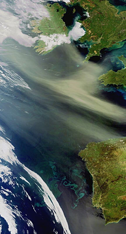 Saharan dust feeds Atlantic Ocean plankton