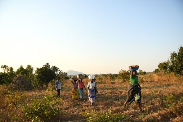Agroecology Is the Solution to World Hunger