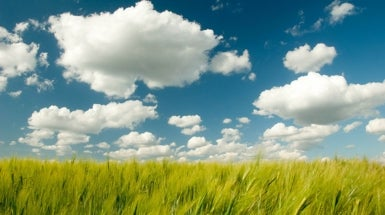 "New Source of Greenhouse Gas ""Cleaners"" Found on Clouds"