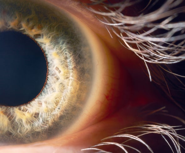 FDA Approves First Gene Therapy Targeting Rare Form of Inherited Blindness