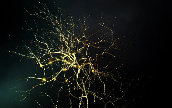 With Brain Implants, Scientists Aim to Translate Thoughts into Speech
