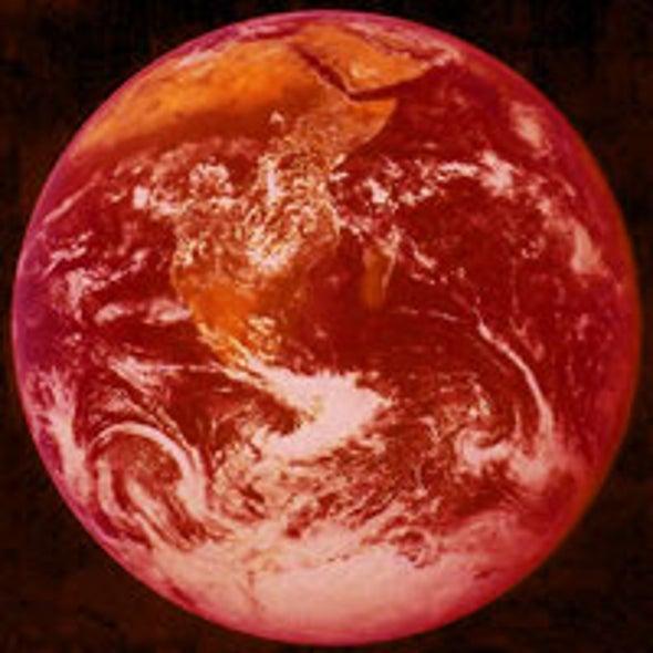 Life on Earth Is Feeling the Heat