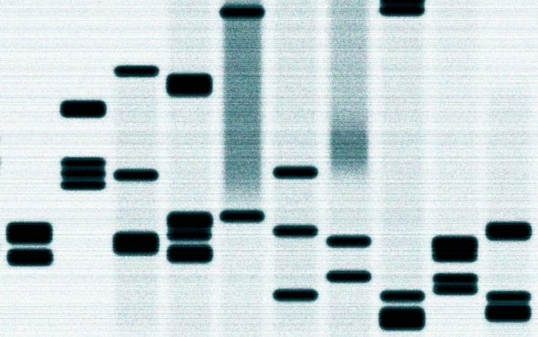 When DNA Differences Matter