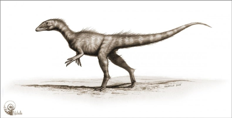 """""""Dragon Thief"""" Dinosaur Thrived after Primordial Calamity"""