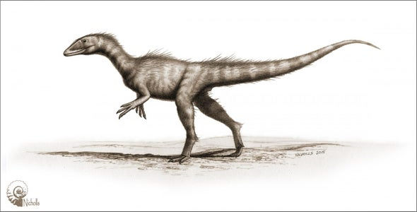 """Dragon Thief"" Dinosaur Thrived after Primordial Calamity"