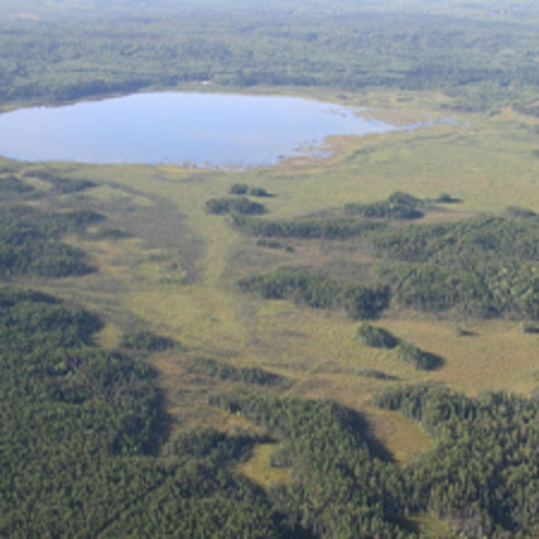 Peat and Repeat: Can Major Carbon Sinks Be Restored by Rewetting the World's Drained Bogs?