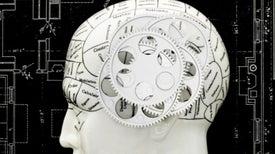 How the Brain Creates a Chronology of Consciousness