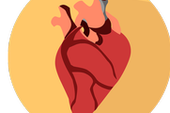 New Wireless Pacemaker Could Prevent Common Complications