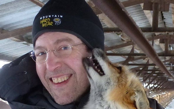 Dogging It: Turning Wild Foxes into Man's Second-Best Friend