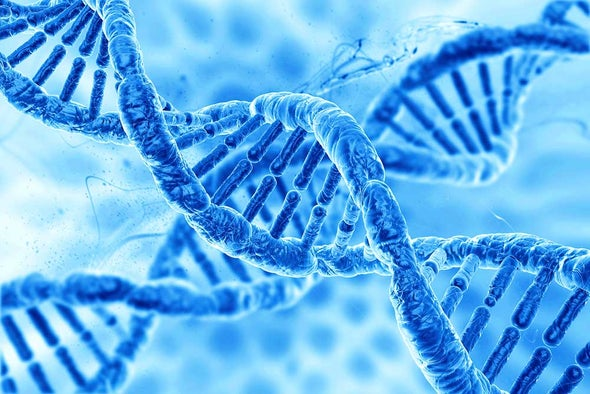 All Gene-Editing Research Should Proceed Cautiously, Scientists Conclude