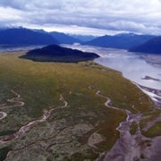 Rapid Sea-Level Rise Threatens Many Coastal Wetlands