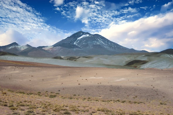 The World's Highest-Dwelling Mammal Lives atop a Volcano